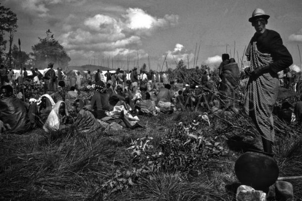 similarities and differences between the rwandan genocide and the holocaust Armenia to rwanda - genocide in the 20th century - has humanity learnt anything: dr sev ozdowski oam (2004) subsection title leave this.